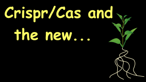Crispr/Cas and the new borderline cases of Plant Biotechnology