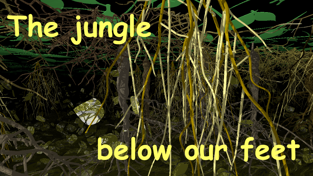 The jungle below our feet