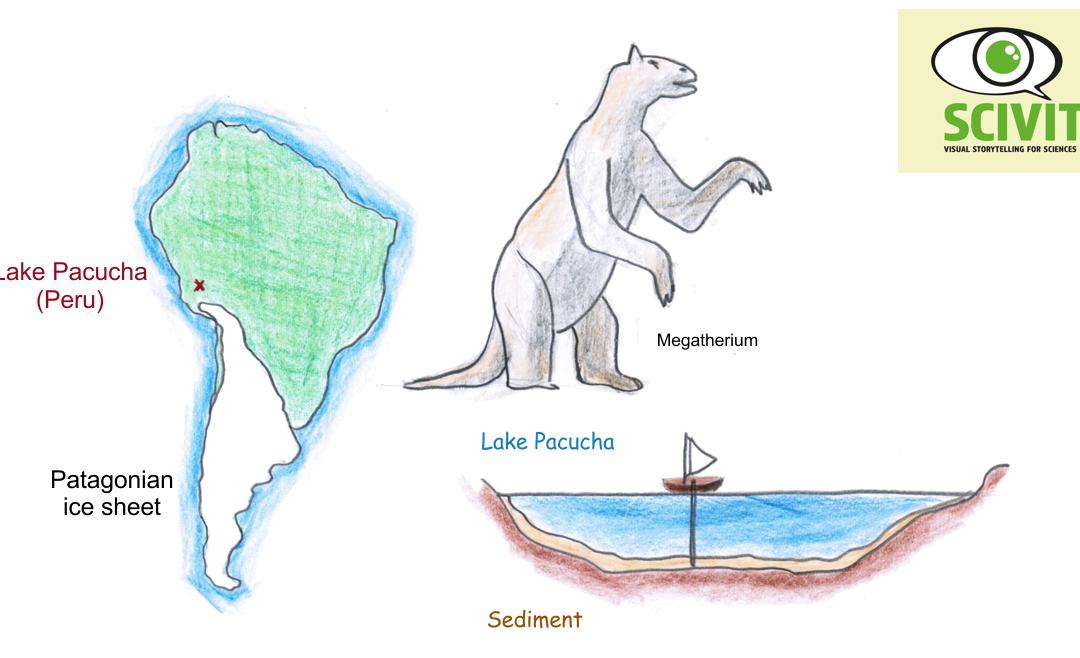 Humans were not responsible for megafauna collapse – at least in South America