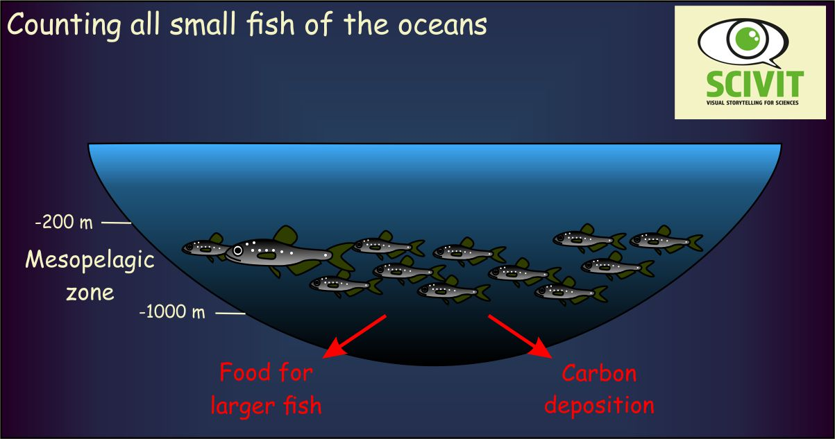 Counting all small fish of the oceans