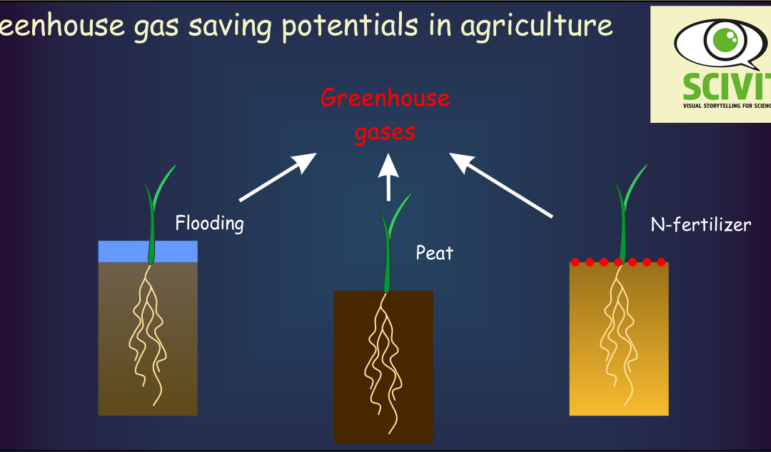 Greenhouse gas saving potentials in agriculture