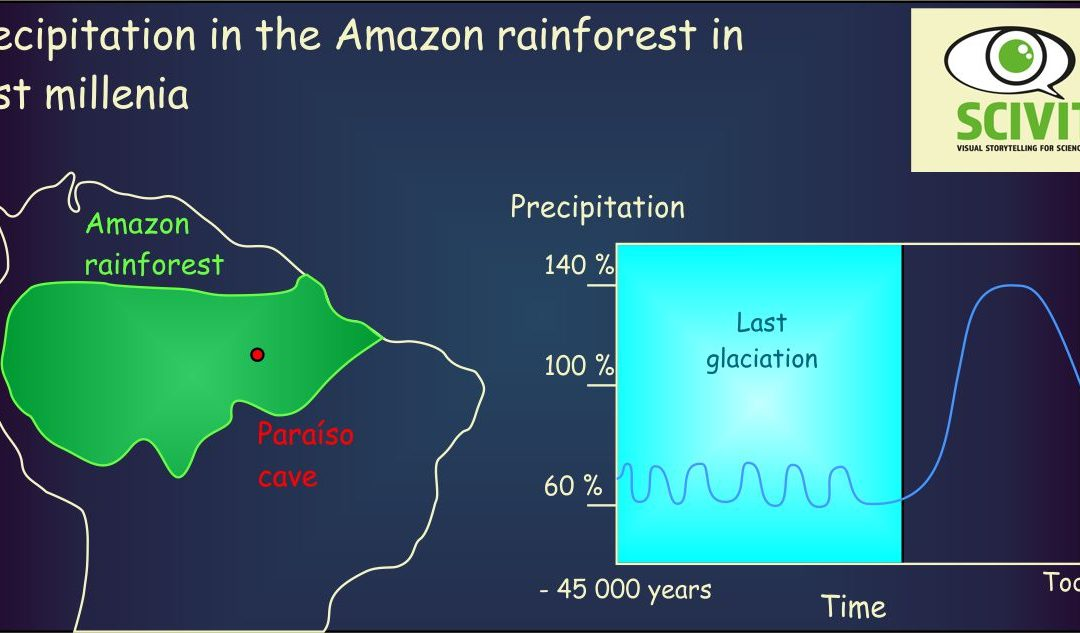 Precipitation in the Amazon rainforest in past millenia
