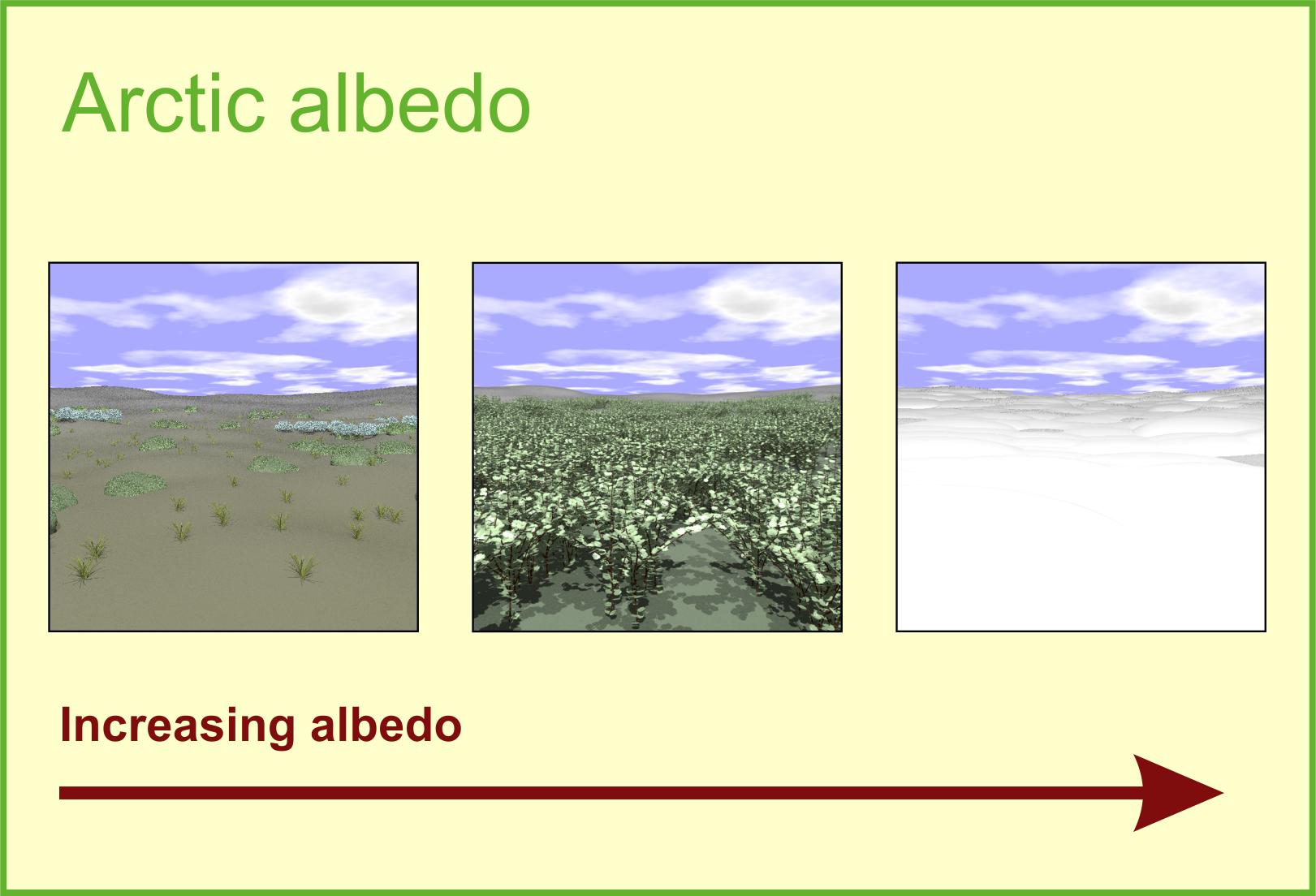 Arctic albedo