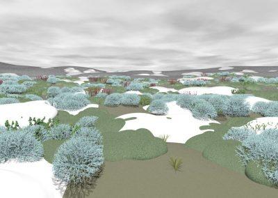Arctic plants, cold conditions