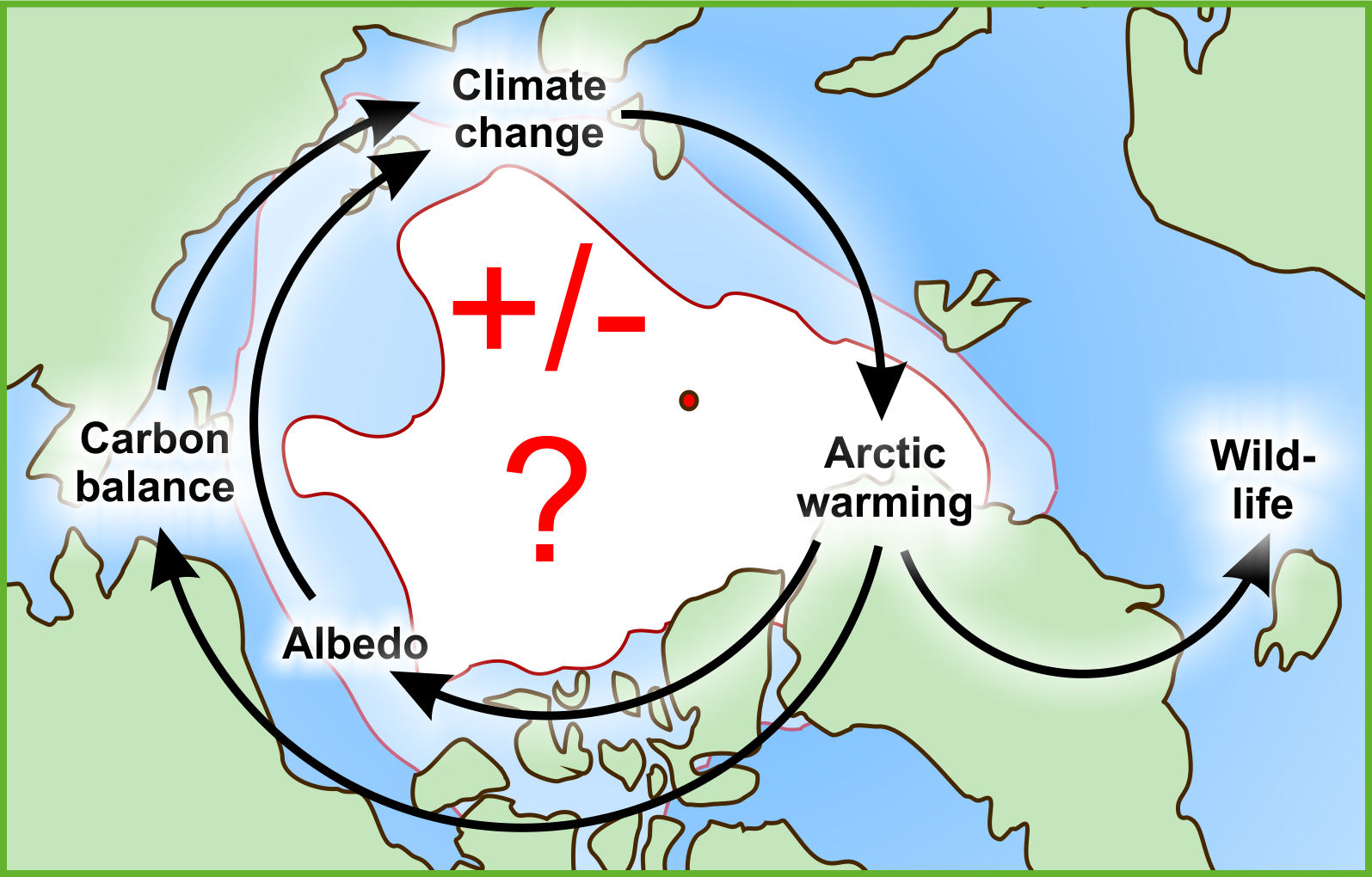 Arctic feedback