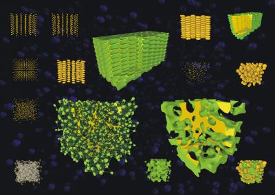 Zelluläre Strukturen
