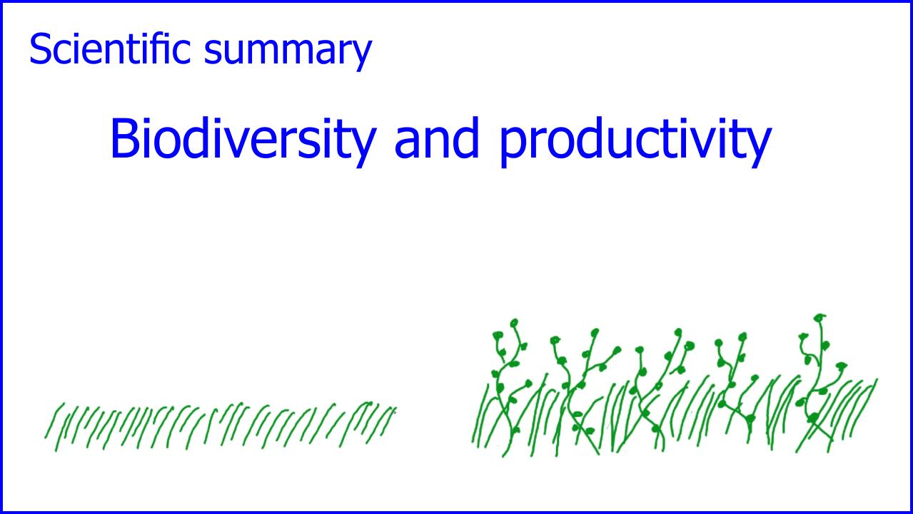 Filme für die Wissenschaftskommunikation - Scivit: Biodiversity and Productivity