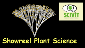 Showreel Botanik
