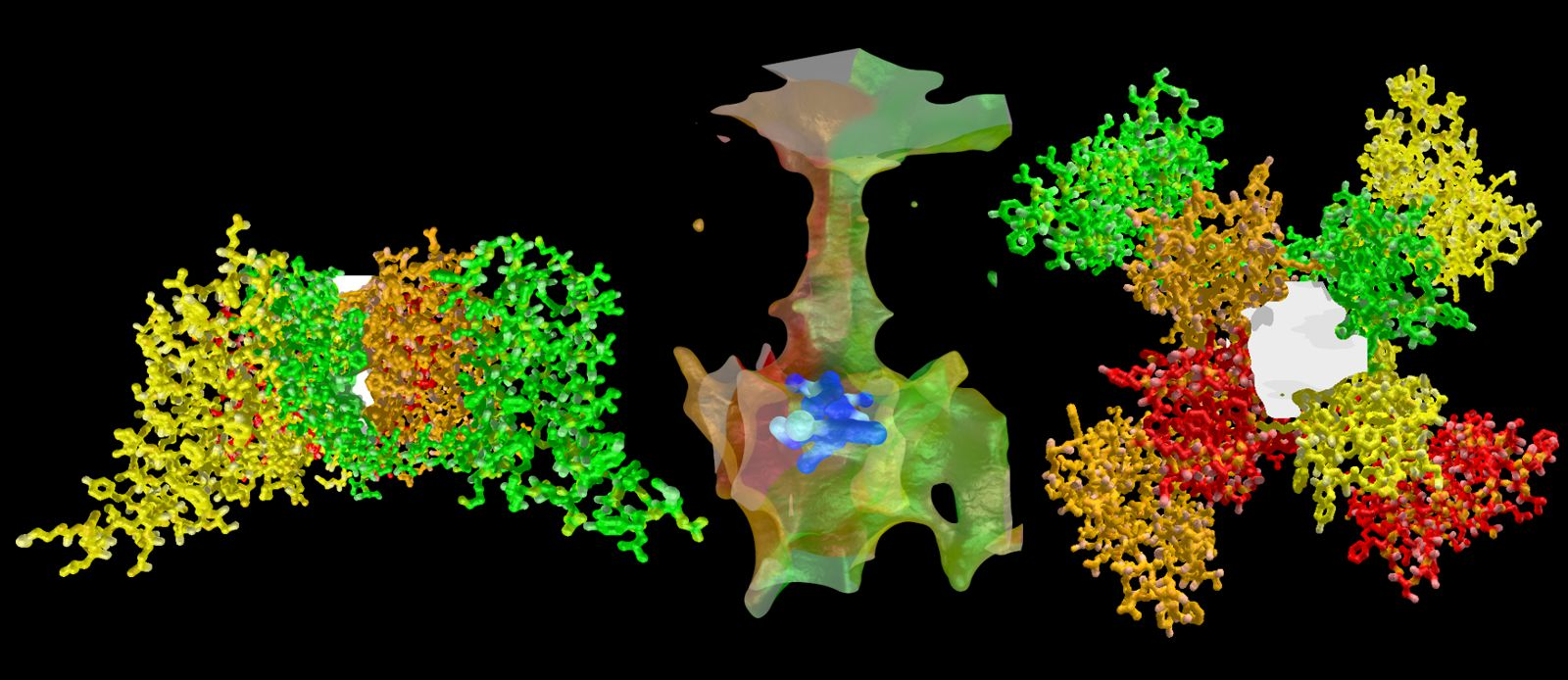 Ca2+ channels and their inhibitors - Scivit News