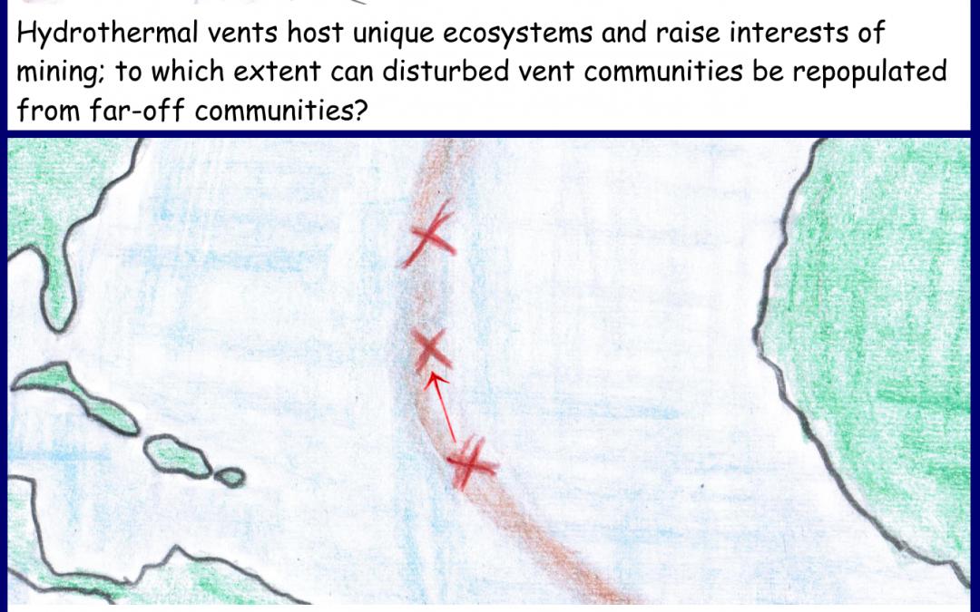 Exchange between isolated deep sea vents