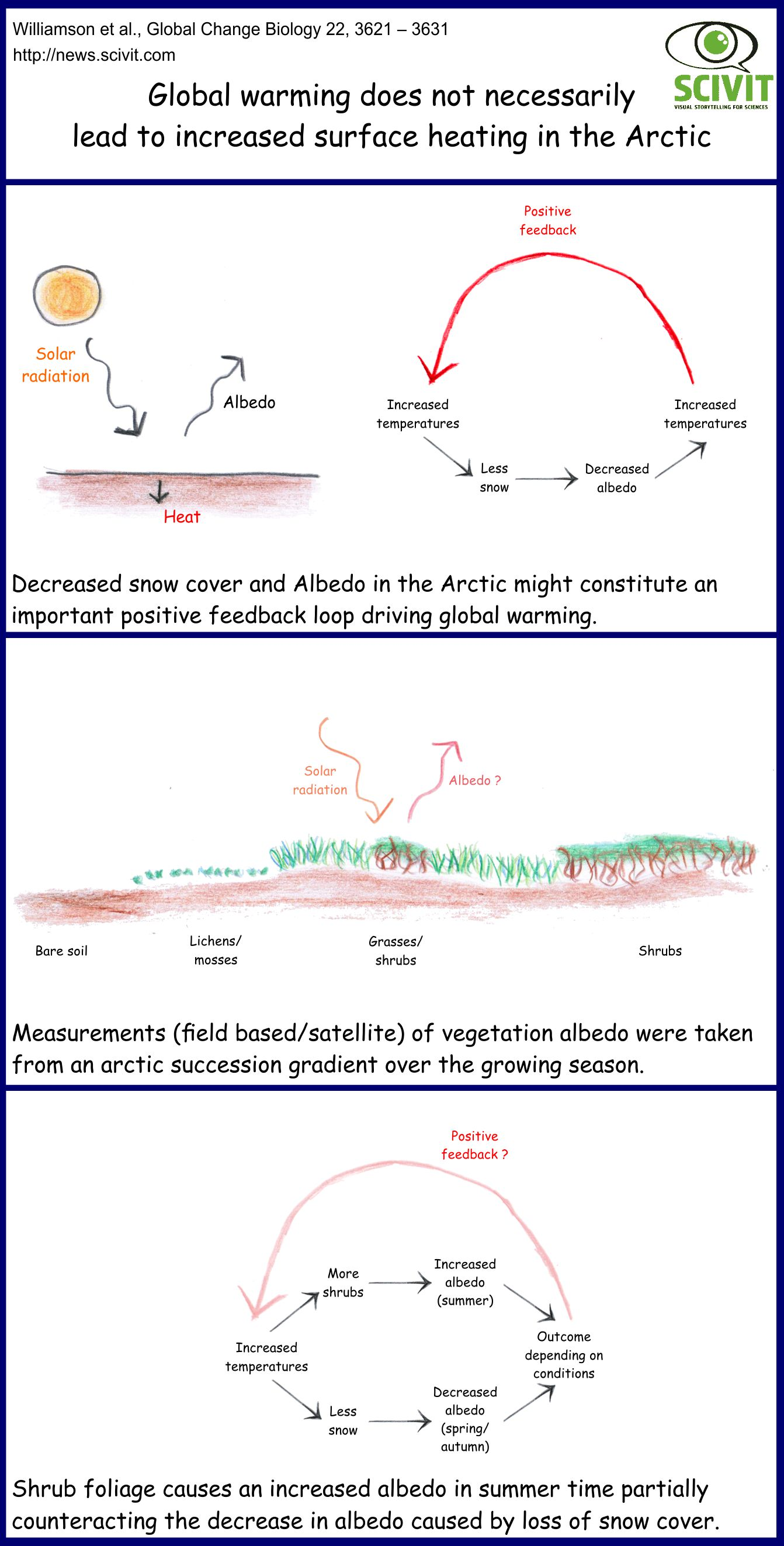 Global warming does not necessarily lead to a decreased arctic albedo