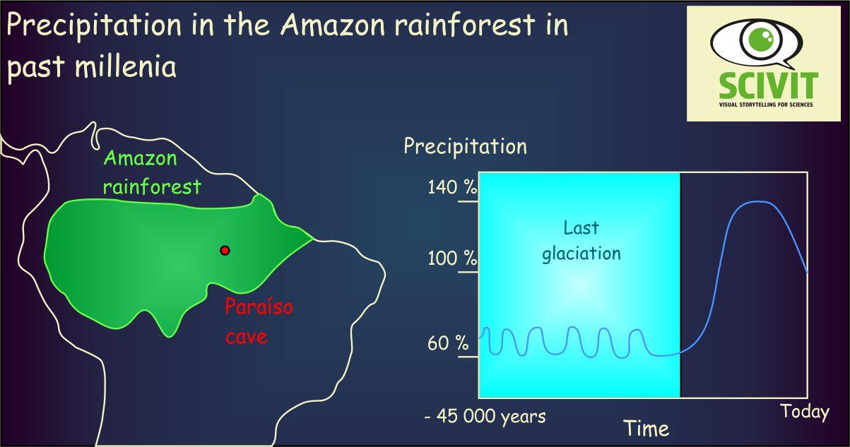 Precipitation in the Amazon rainforest in past millenia