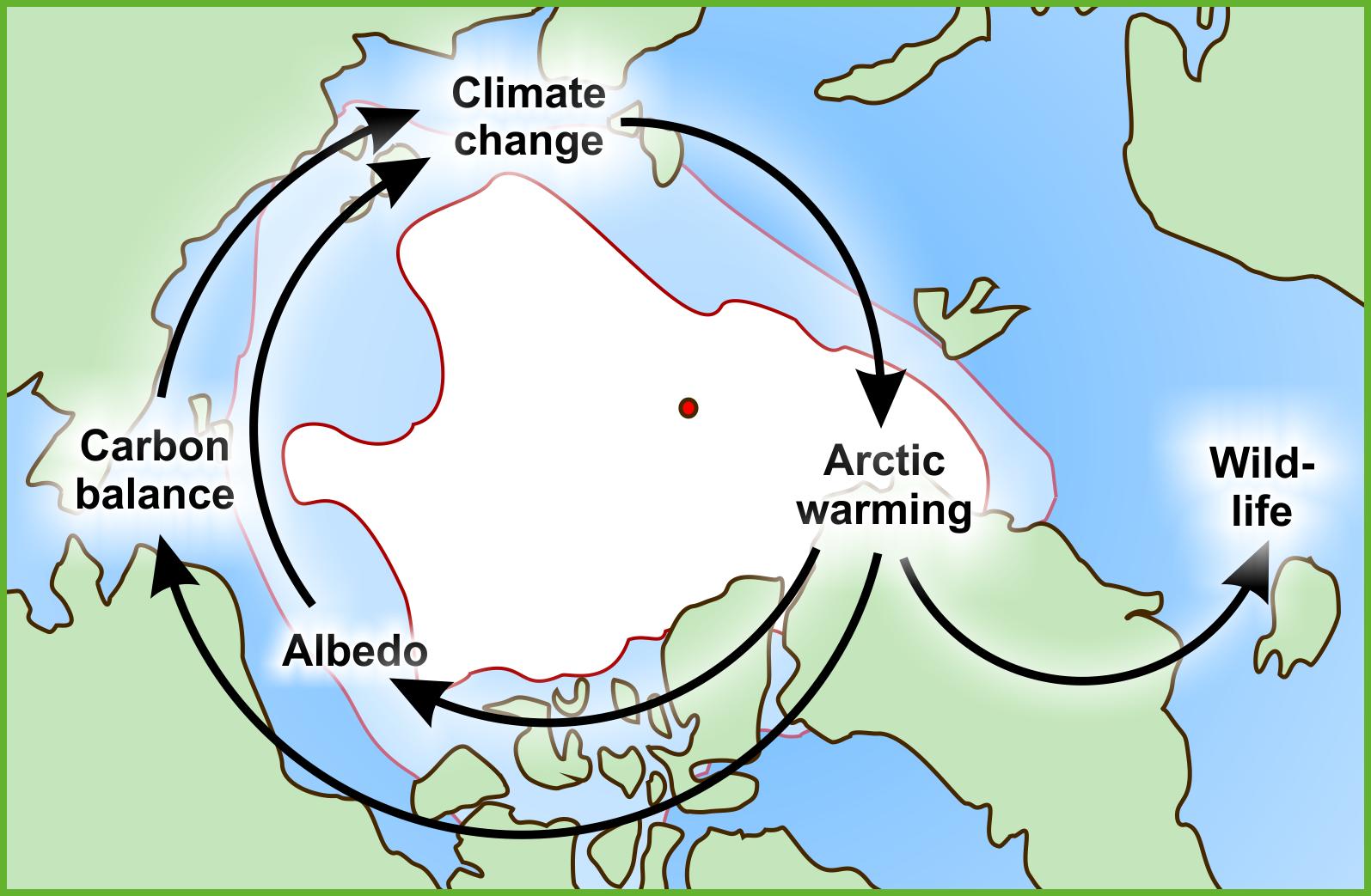 Arctic impact