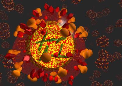 Das Grippe-Virus