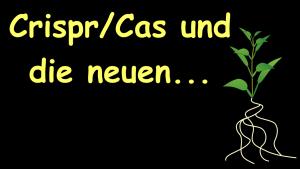 Crispr/Cas und die neuen Grenzfälle der Grünen Gentechnik