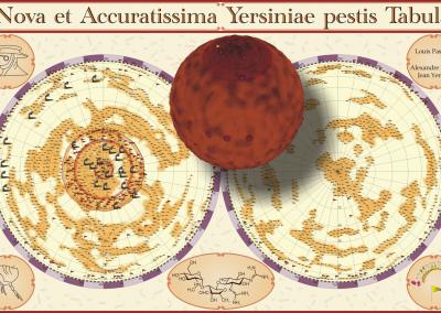 Genom das Pesterregers als virtueller Planet